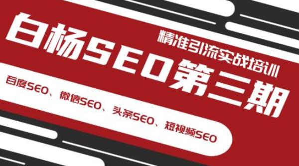 白杨SEO精准引流排名实战培训第三期 专注SEO研究十年实战派