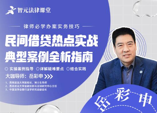 岳彩申:民间借贷热点实战典型案例全析指南,价值139元