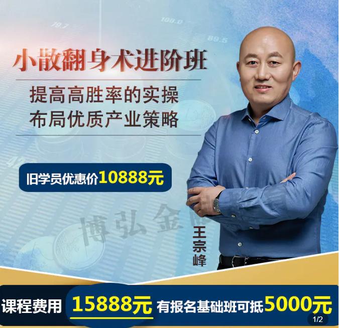 2021王宗峰小散翻身术溪流进阶班,财报深度解读长期盈利
