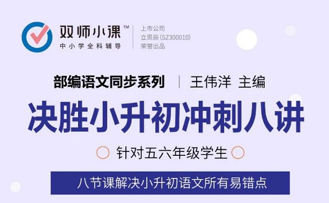 部编语文同步系列:王伟洋决胜小升初冲刺八讲,适合五六年级
